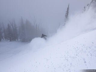 powder, snowboarding, Jackson Hole, Wyoming