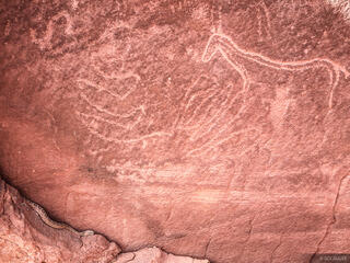 petroglyph, horse, rattlesnake, Escalante, Utah, Glen Canyon National Recreation Area