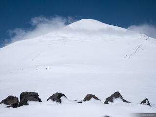 Mt. Adams Snowfield