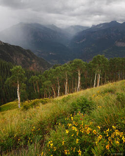 rain, Bridge of Heaven, Ouray, Colorado, San Juan Mountains