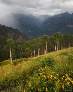 rain, Bridge of Heaven, Ouray, Colorado, San Juan Mountains
