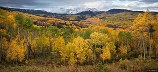 Dolores Peak, aspens, autumn, Telluride, San Juan Mountains, Colorado
