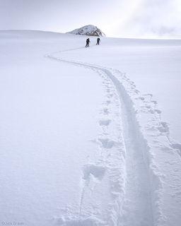 Skin track, powder, San Juan Mountains, Colorado