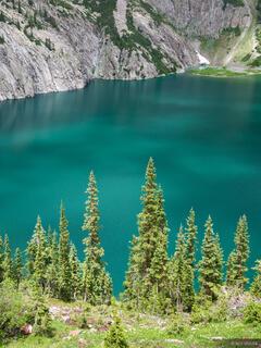 Snowmass Lake Trees