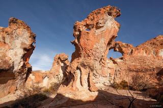 Ginger Rocks #1
