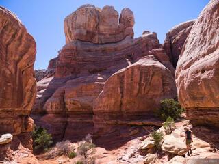 Hiking Into Elephant Canyon