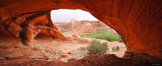 alcove, Coyote Gulch, Escalante, Utah, Grand Staircase-Escalante National Monument
