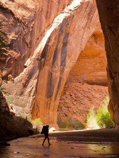 Coyote Gulch, Escalante, Utah, hiking, Grand Staircase-Escalante National Monument