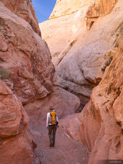Little Wildhorse Canyon, San Rafael Swell, Utah, hiking