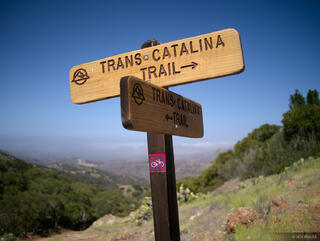 Trans Catalina Trail, Catalina Island, California