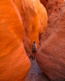 Little Death Hollow, Escalante National Monument, Utah, Grand Staircase-Escalante National Monument