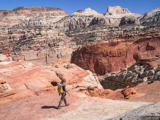 Capitol Reef, Cohab Canyon, Utah, hiking