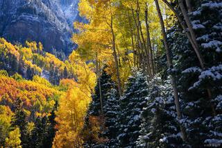 San Juan Mountains, Colorado, autumn, aspens