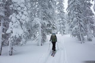Colorado, Fowler Hilliard Hut, Gore Range, January, skiing