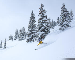 Jake in the Powder
