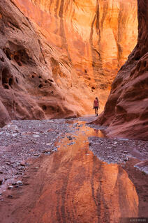 Choprock Canyon, Escalante, Escalante National Monument, Utah, Grand Staircase-Escalante National Monument
