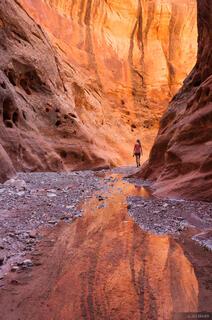 Choprock Canyon, Escalante, Utah, Glen Canyon National Recreation Area