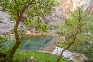 Death Hollow, Escalante, Escalante National Monument, Utah, Grand Staircase-Escalante National Monument