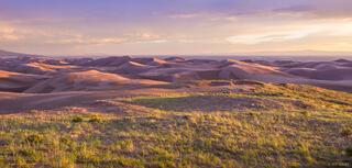 Dunes Meadow
