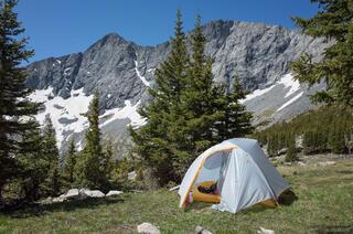 Camping Near Lily Lake