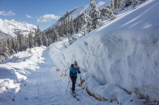 Snowpack Roadcut