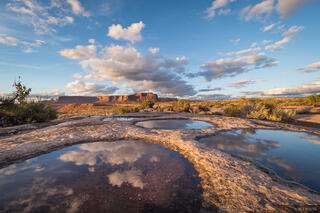 Utah, Cedar Mesa, potholes, Bears Ears National Monument