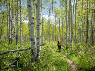 Colorado, Elk Mountains, Kebler Pass, aspens, hiking, spring, June, Raggeds Wilderness