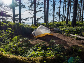 Olympic Peninsula, Washington, tent, Olympic National Park