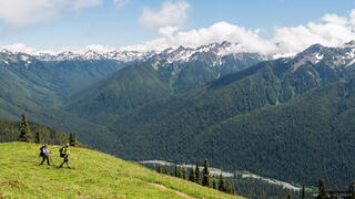 Mount Olympus, Olympic Peninsula, Sol Duc, Washington, Olympic National Park, High Divide, hiking