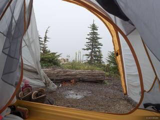 Tent Goat