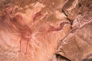 Black Dragon Wash, San Rafael Swell, Utah, pictographs