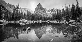Lone Eagle Reflection Pano B&W