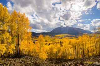Colorado, Elk Mountains, Kebler Pass, aspens, October, East Beckwith Mountain