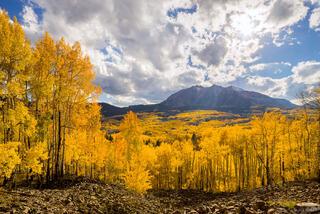 Colorado, Elk Mountains, Kebler Pass, aspens, October, East Beckwith Mountain