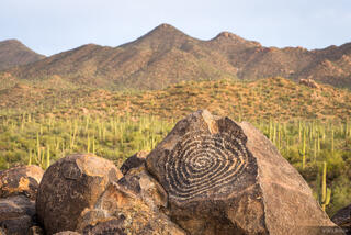 Arizona, Saguaro National Park, petroglyphs, Hohokam, Signal Hill
