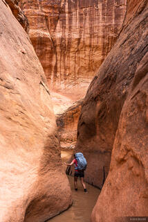 Escalante, Fortymile Gulch, Glen Canyon National Recreation Area, Utah, hiking