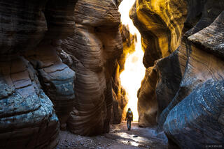 Grand Staircase - Escalante National Monument, Utah, Willis Creek, hiking