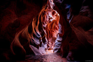 Buckskin Gulch, Paria Canyon-Vermilion Cliffs Wilderness, Utah, Vermilion Cliffs National Monument