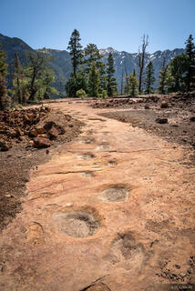 Colorado, San Juan Mountains, Sneffels Range, dinosaur tracks, Ouray