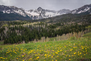 Colorado, San Juan Mountains, Sneffels Range, Mears Peak, Box Factory Park
