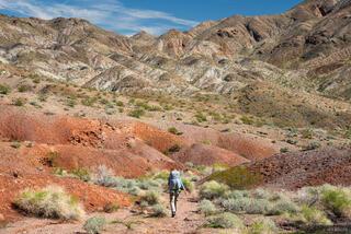 Nevada, Pinto Valley Wilderness, hiking, Mojave Desert, Lake Mead National Recreation Area