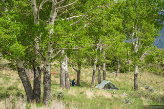 Colorado, Great Sand Dunes, camping, tent, aspens
