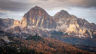 Dolomites, Italy, Passo Giau, Tofana de Rozes, larch, October, Alps