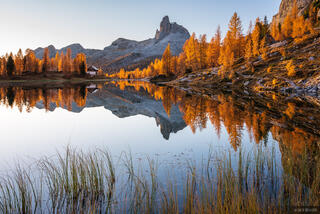 Becco di Mezzodi, Dolomites, Italy, Lago Federa, larch, October, reflection, Alps