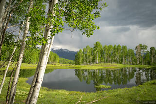Cimarrons, Colorado, San Juan Mountains, aspens