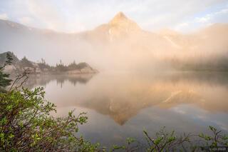 Macey Foggy Reflection