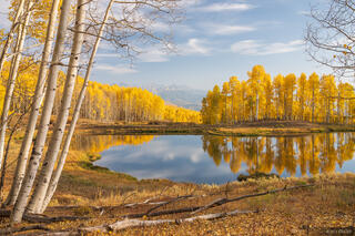 Cimarrons, Colorado, Courthouse Mountain, San Juan Mountains, aspens, autumn, fall