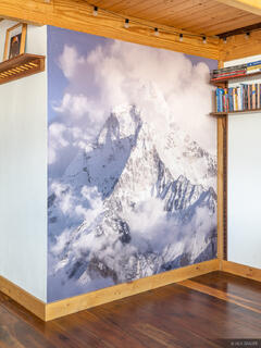 Now offering Giant Wall Murals!