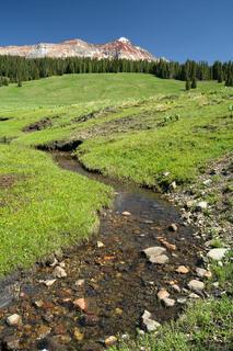 Mountain Wilson Meadows