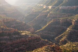 Canyon Morning Light